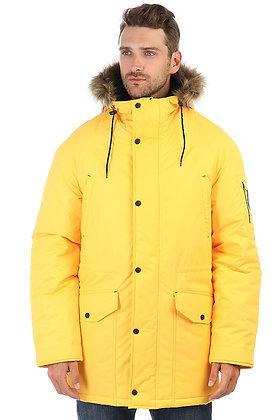 Anteater Alaska-yellow
