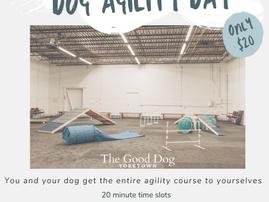 Weekly Dog Agility Day
