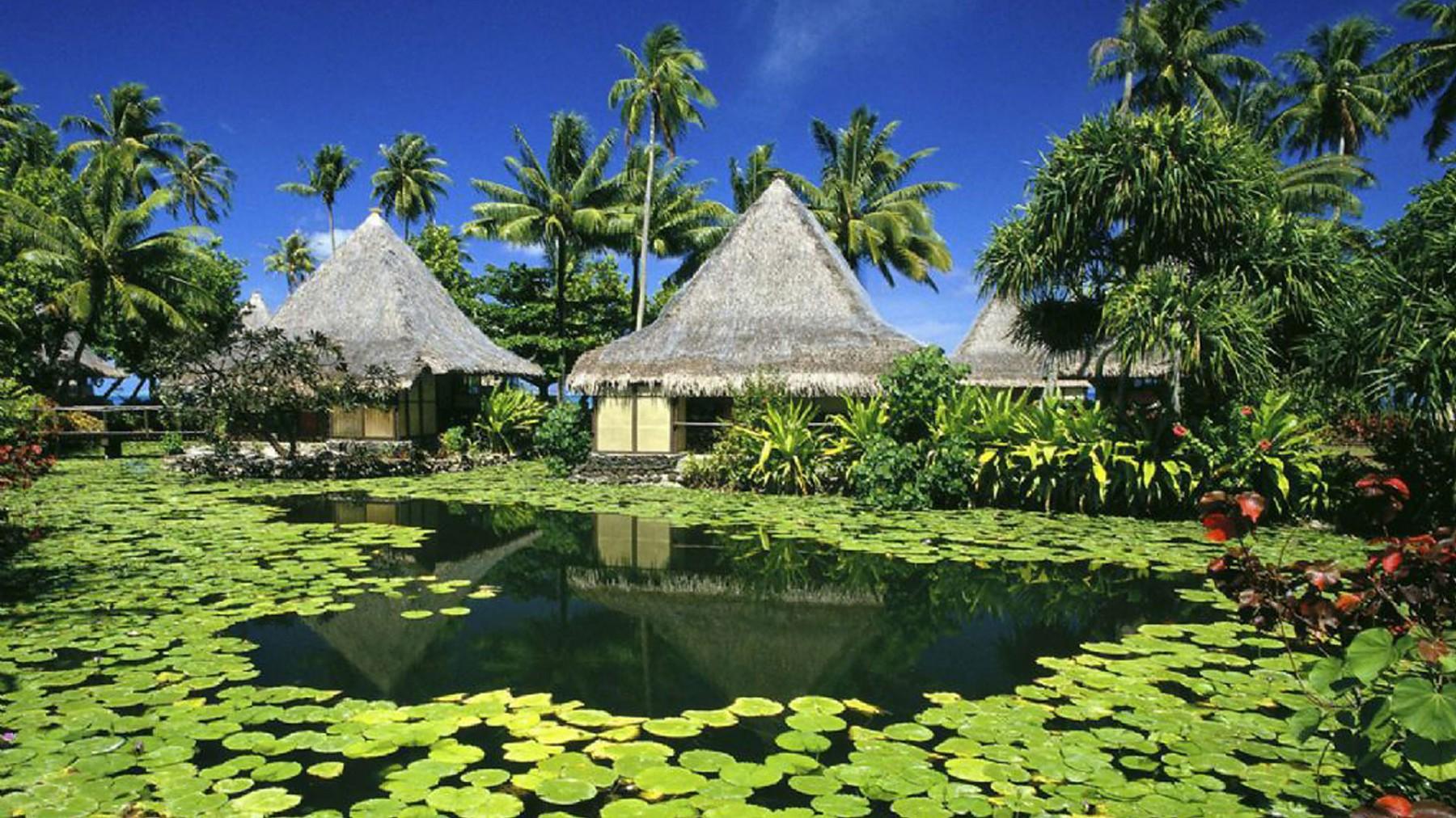 beauty_Tahiti_is_a_very_romantic_france