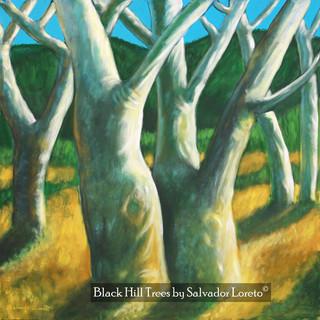 Black Hill Trees
