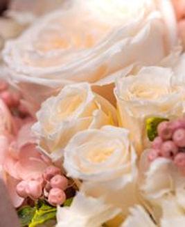 flower420156.jpg