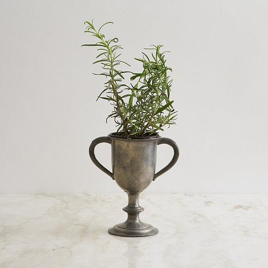 Petite Vintage Trophy