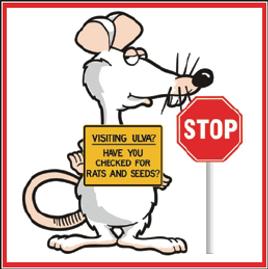 Ulva Island - check for rats cartoon