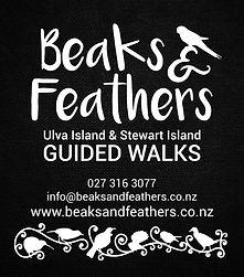 Beaks_and_Feathers_Logo_webversion.jpg