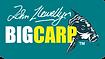 big carp.png