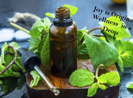 Embracing A Wellness Lifestyle, the Only New Year's Resolution