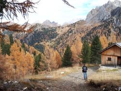 i colori dell'autunno alla malga Monzoni