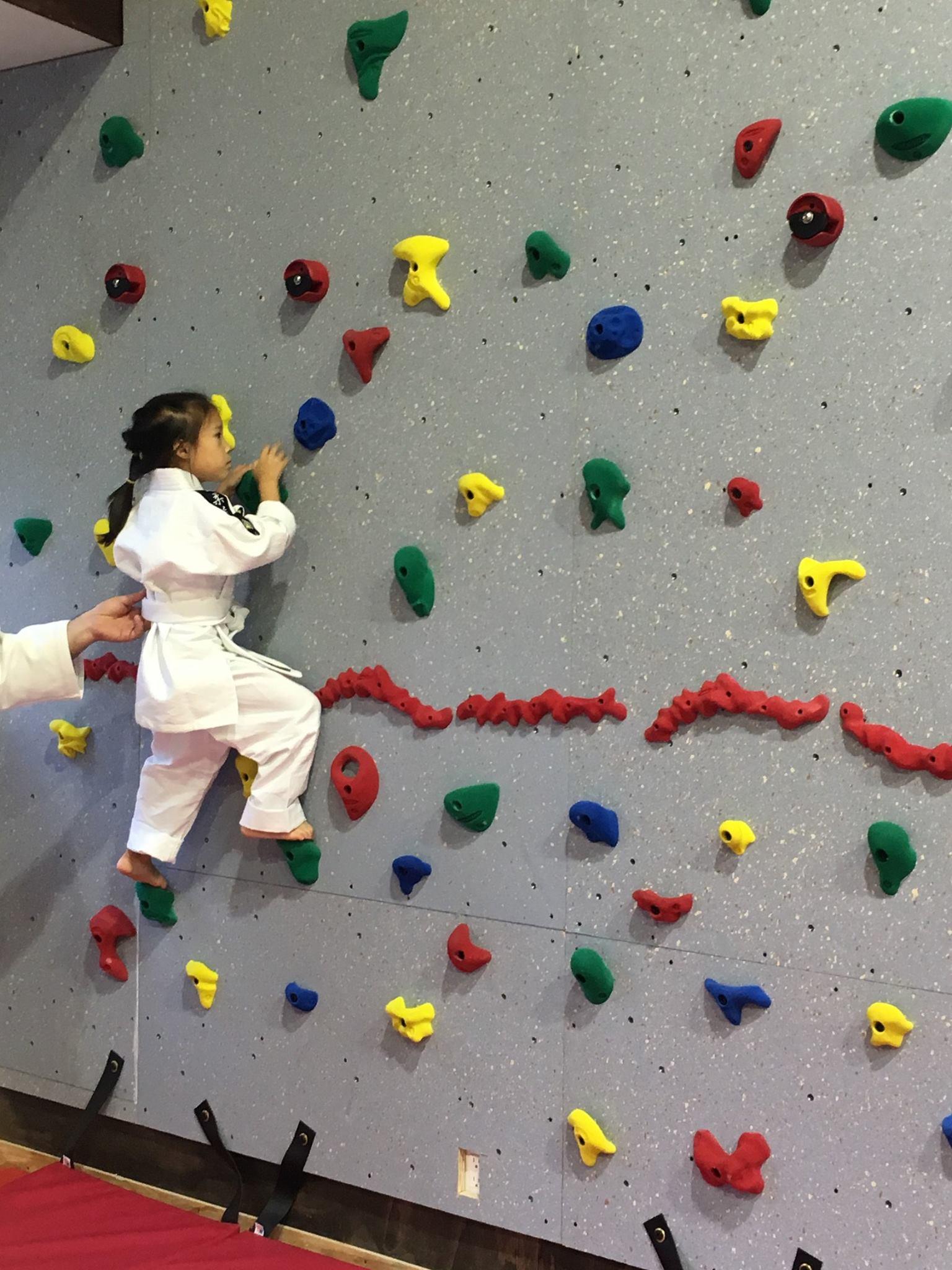 Climbing wall at IJC judo club