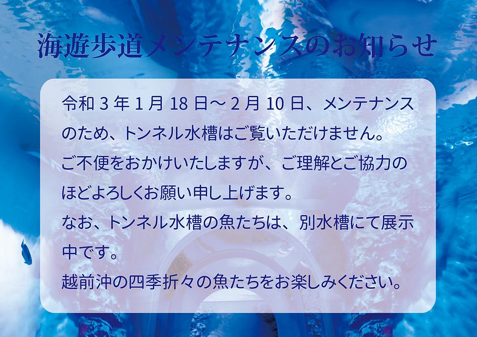 海遊歩道メンテ_2_compressed.png
