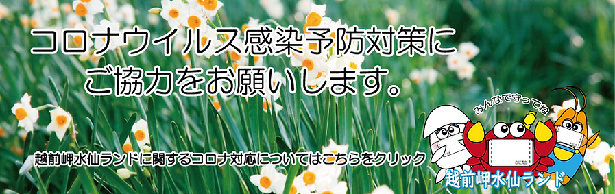 コロナウイルス対策用体育施設バナー(水仙ランド).png