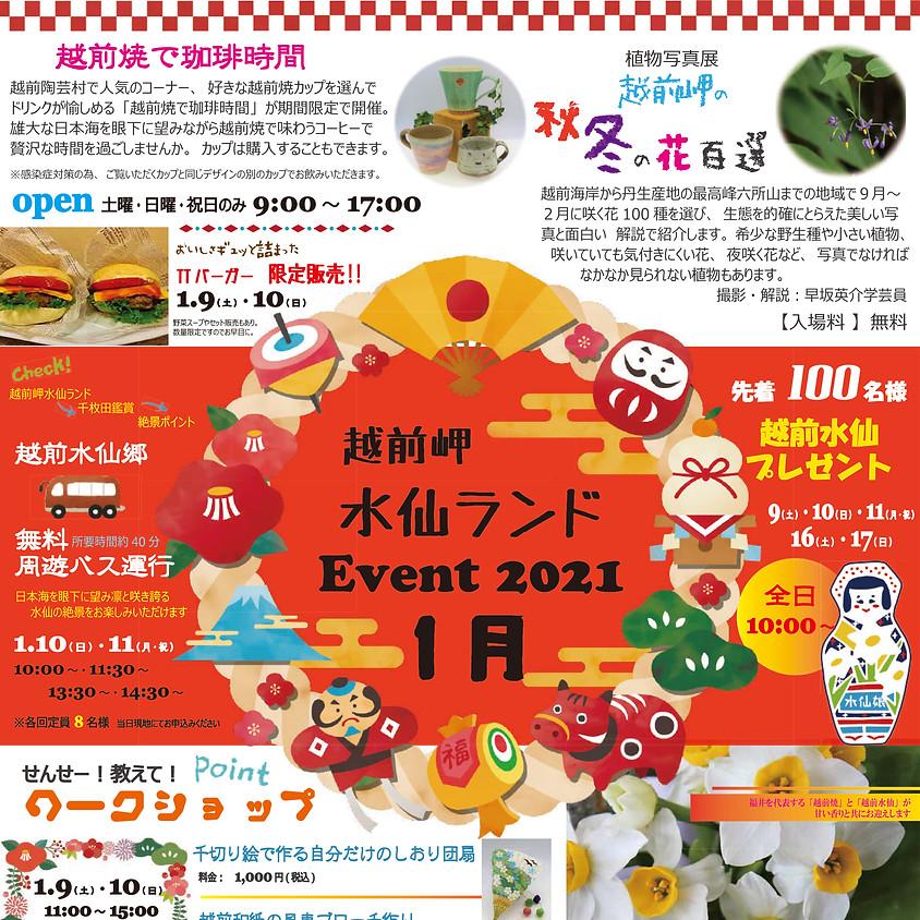 越前岬水仙ランド イベント 1月