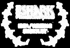 MV_laurels_website_ideaWriting.png