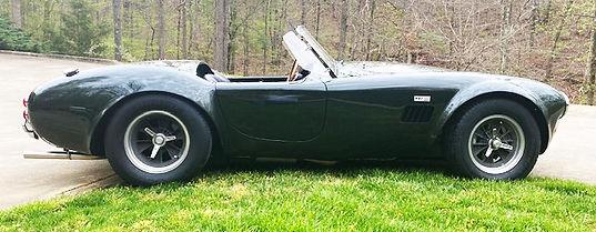 Cobra Photo 2.jpg