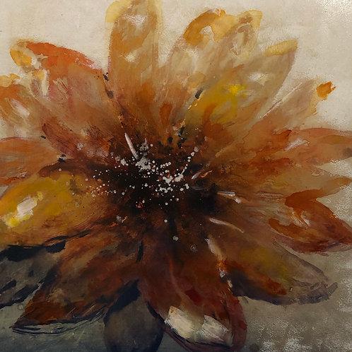Gloss Orange Calendula