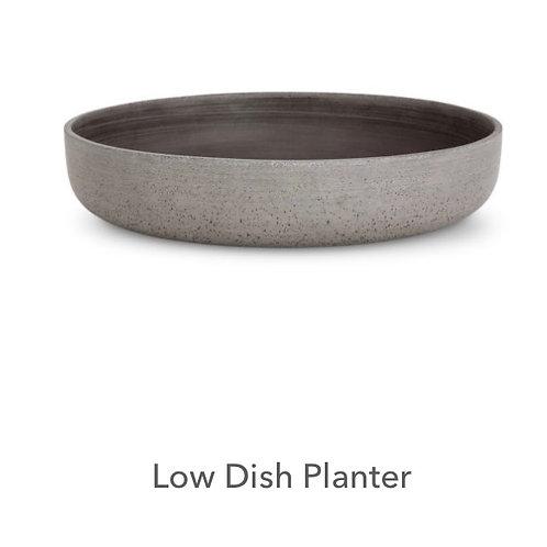 Low dish Planter
