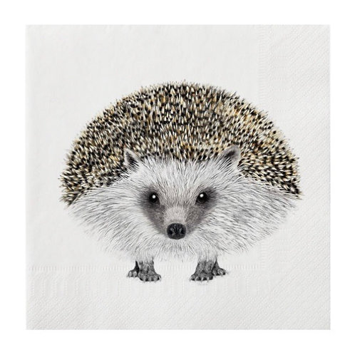 Large Henry Hedgehog Napkins 20 Pack