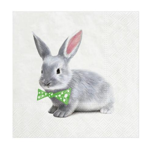 Ben Bunny Easter Napkins