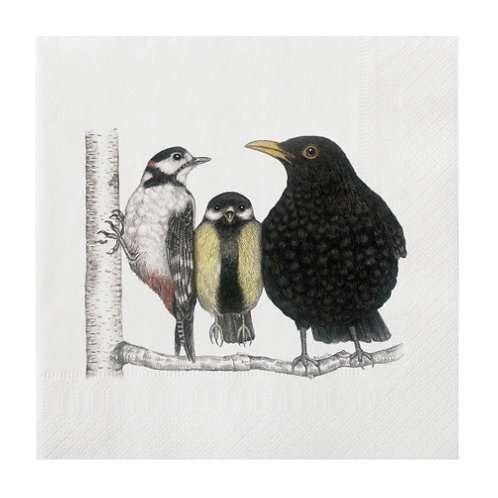 Large Bird Conversation Napkins 20 Pack