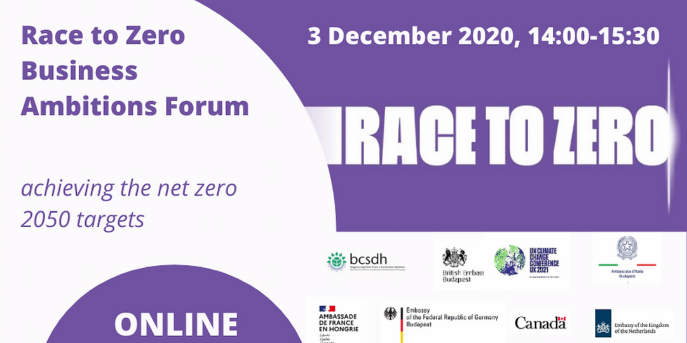 Race to Zero virtual Business Ambitions Forum