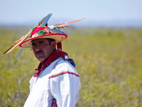 EL PUEBLO WIXÁRIKA Y LA COMUNIDAD WIRARITARI