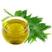 Neem-oil-100-OIL.jpg_350x350.jpg
