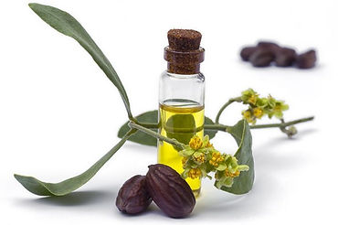 organic_golden_jojoba_oil.jpg