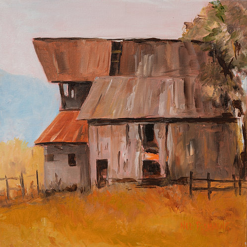 Florida Barn by Ned Flemming