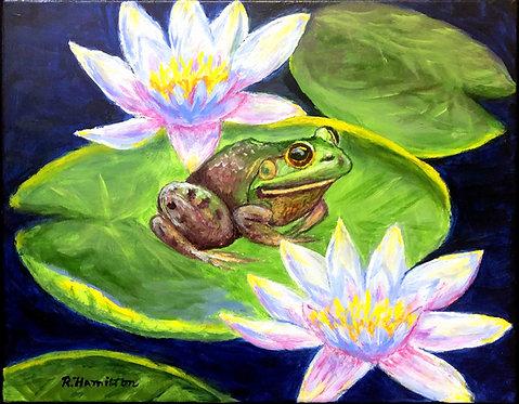 Bull Frog by Dick Hamilton