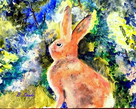 Rabbit by Betsy Drake Hamilton