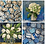 Thumbnail: Notecards Set of 8 - Very Blue Series