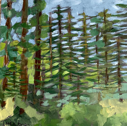 PNW Forest 6x6