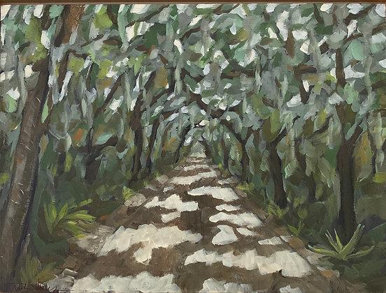 Cumberland Oak Canopy