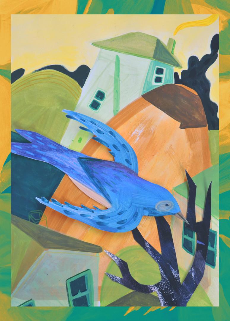 birdview1.jpg