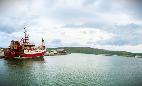 Dingle Harbor