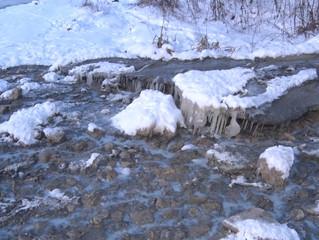 Представители Общественной палаты обнаружили слив сточных вод неизвестного происхождения