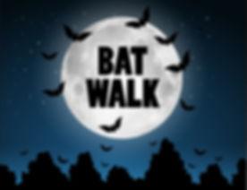 Bat-walk_430x330px.jpg