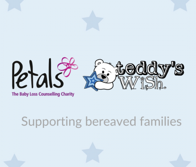 Teddy's Wish and Petals – New Partnership