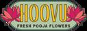 HoovuLogoHorizontal_1427x.png