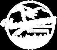 logo_hochwang_weiss_plus.png