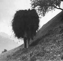 Heuen in Klosters_aus Jakob Vetsch_Ds GoldbrÅnneli_1998_S. 118_600dpi web.jpg