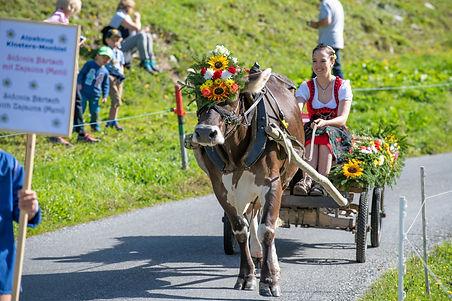 Destination Davos Klosters (1) web.jpg