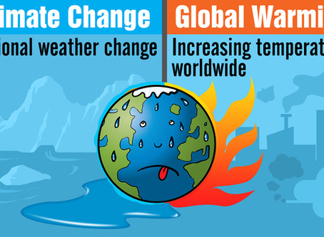 CLIMATE CHANGE-THE IMPACT IN THE CONSTRUCTION INDUSTRY