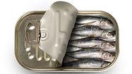104010603-makeit_craig_cooper_sardines_3