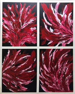 Fleurs de Corail Rouge