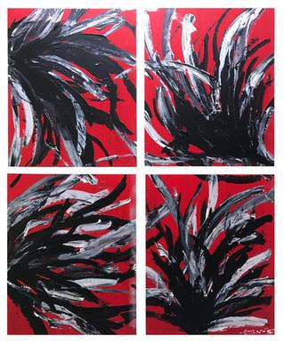 Fleurs de Corail Noir