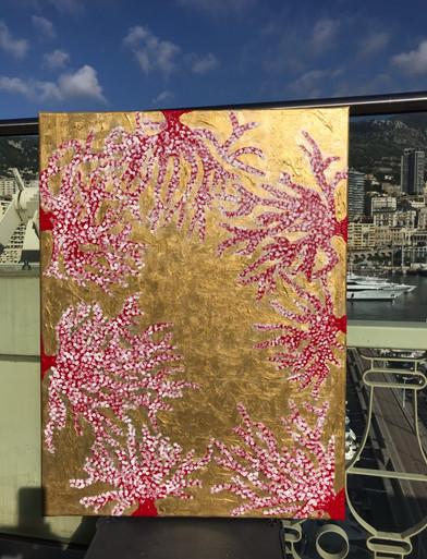 Corail rouge l'or de la Méditerranée