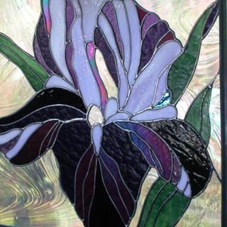 stained glass iris.jpg