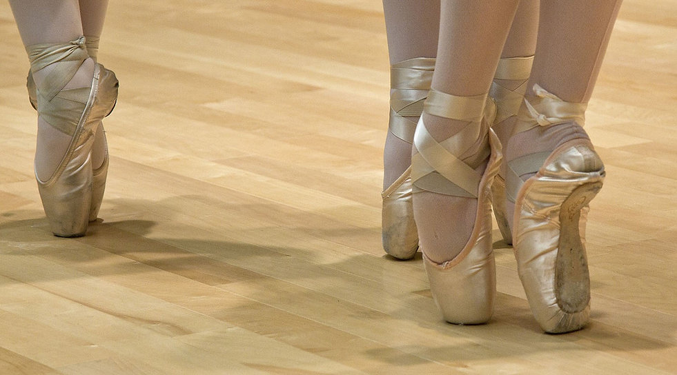 ballet-shoes-999807_1920b.jpg