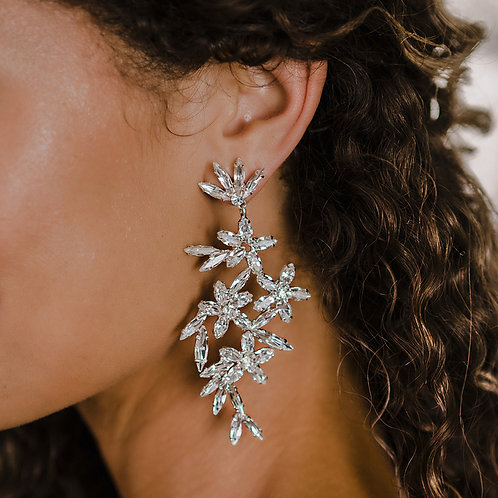 Earrings - E2166