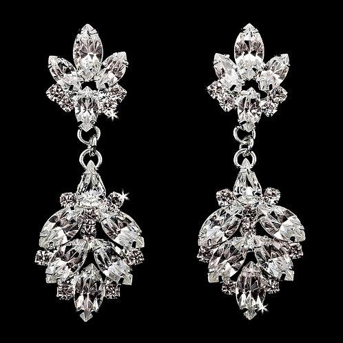Earrings - E1873